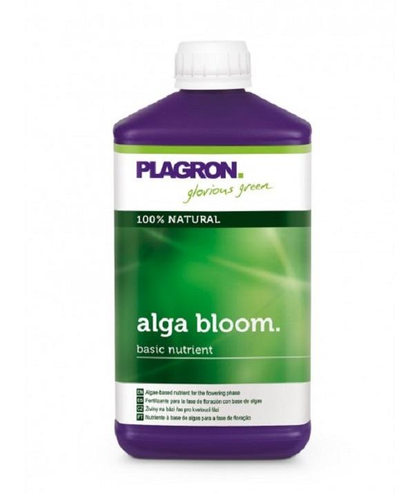 plagron-1