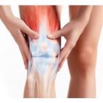 Vpliv kolagena na zunanje in notranje delovanje telesa