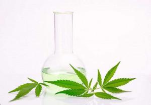 CBD konopljino olje lahko uživamo na različne načine